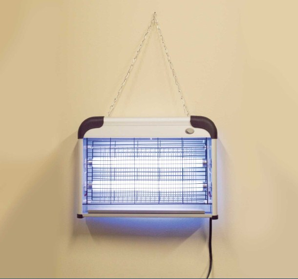Best Insect Killer light