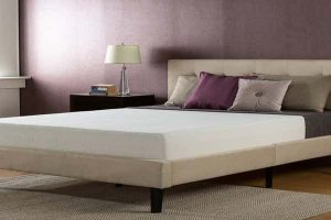 Zinus Sleep Master Ultima Comfort Memory Foam 10 Inch Mattress Queen-min