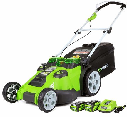 1. GreenWorks 25302 Review